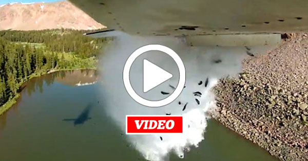 VIDEO: How an Airplane Stocks a Remote Lake with Fish by Dropping them like a Bomb